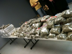 drug bust